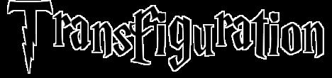 transfiguration copy